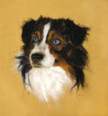 Jeannette Fedorka Aussie Dog