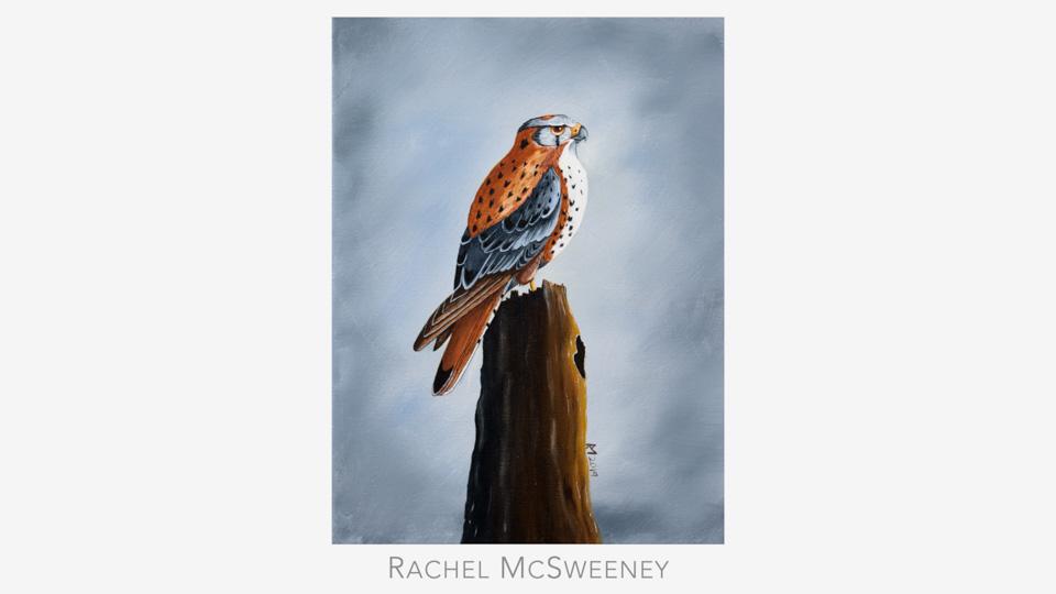 Rachel McSweeney